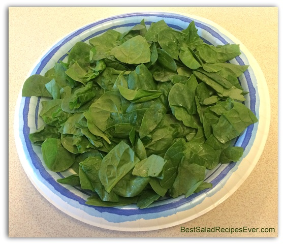 First Layer a Plate of Spinach